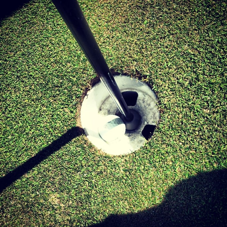 First Albatross